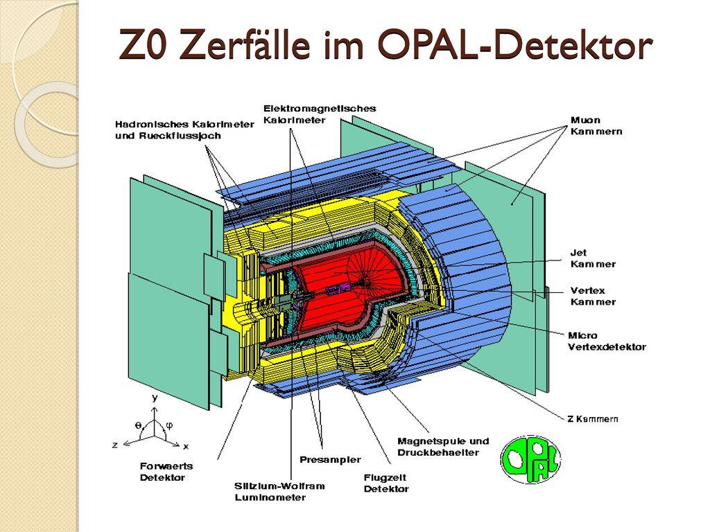 Z0 Zerfälle im OPAL-Detektor
