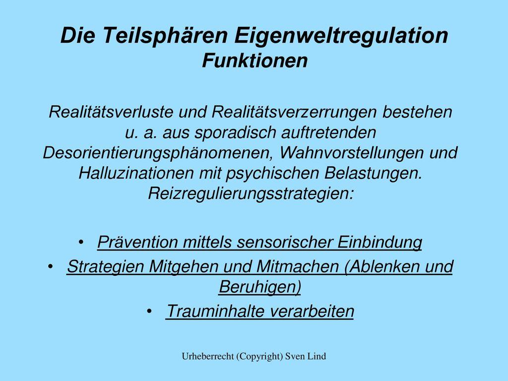 Die Teilsphären Eigenweltregulation Funktionen
