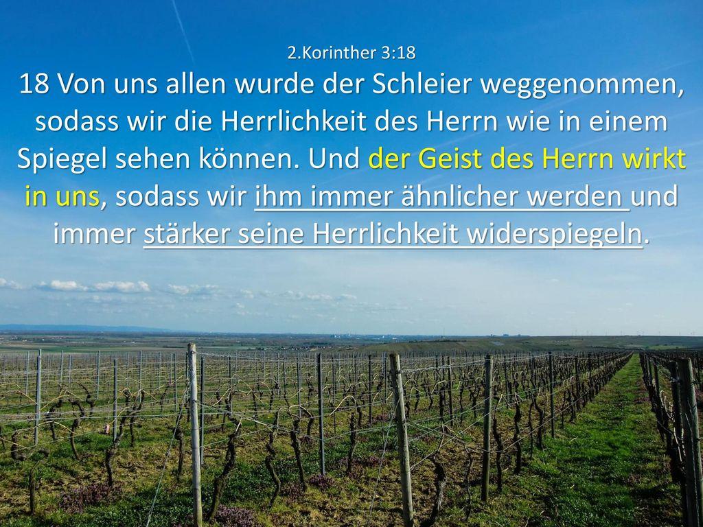 2.Korinther 3:18 18 Von uns allen wurde der Schleier weggenommen, sodass wir die Herrlichkeit des Herrn wie in einem Spiegel sehen können.