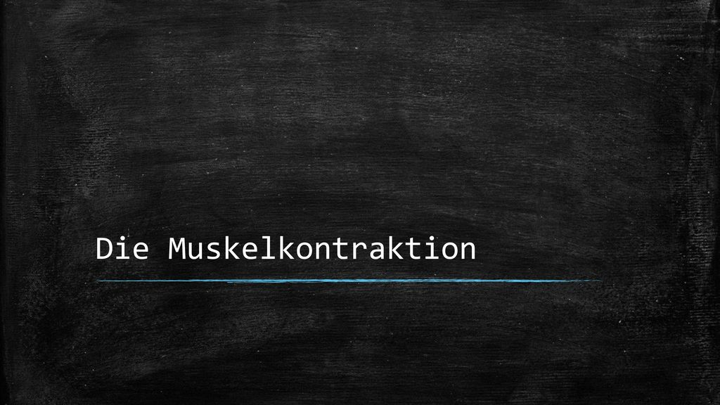 Die Muskelkontraktion