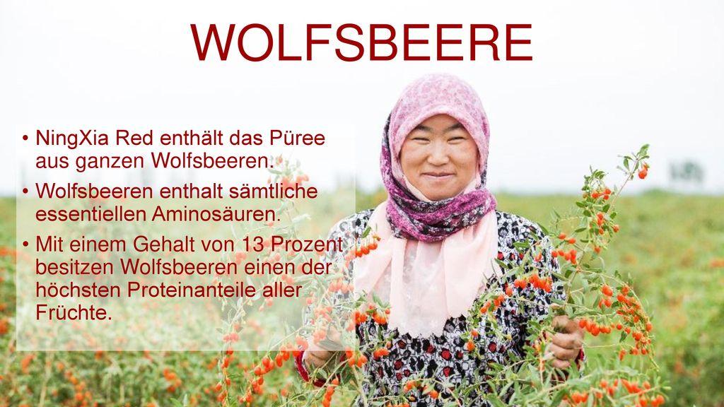 WOLFSBEERE NingXia Red enthält das Püree aus ganzen Wolfsbeeren.