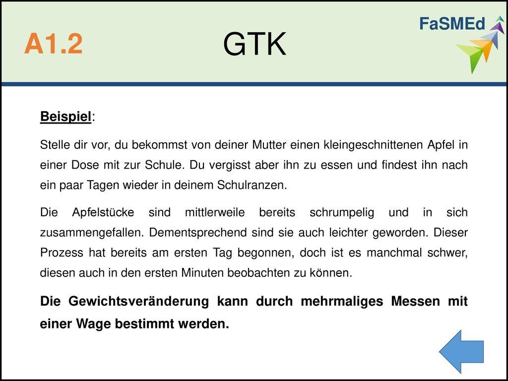 FaSMEd GTK. A1.2. Beispiel: