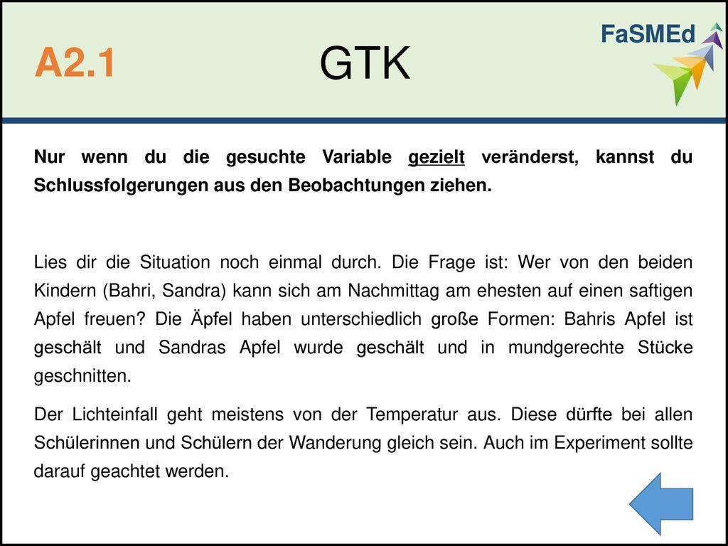 FaSMEd GTK. A2.1.