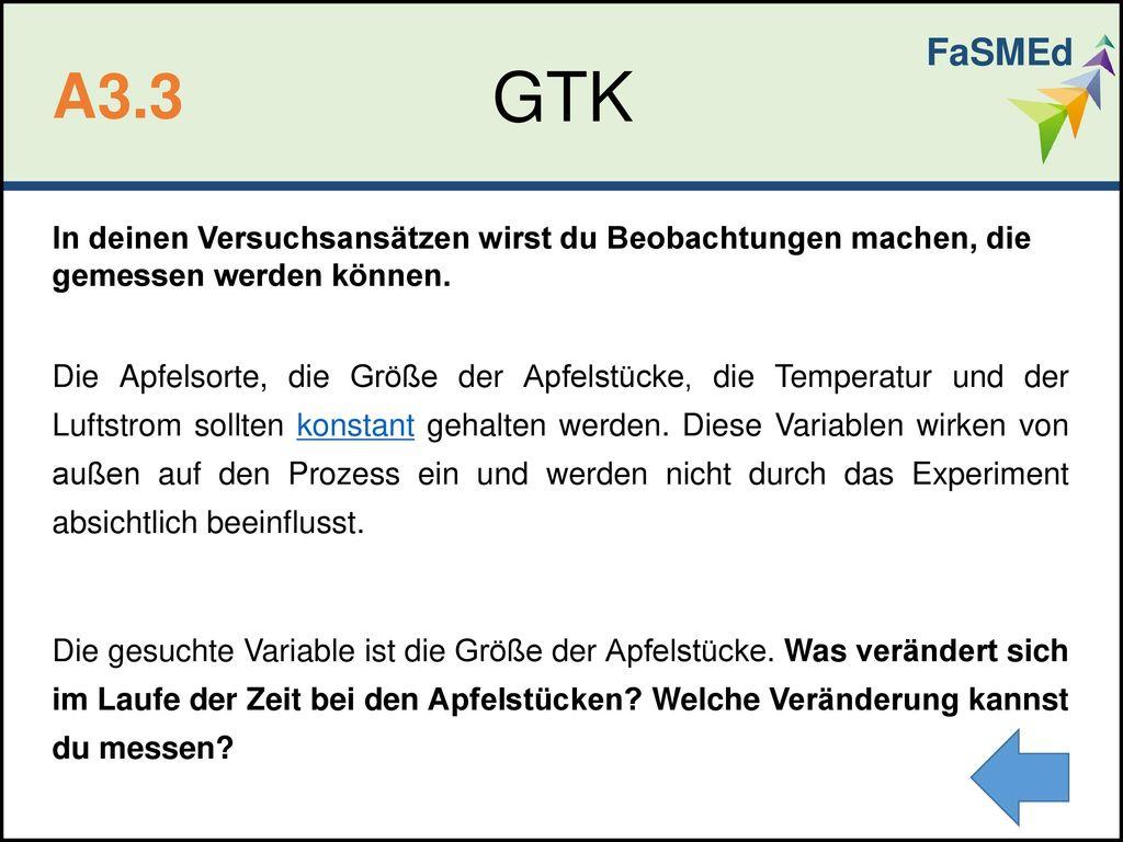 FaSMEd GTK. A3.3.