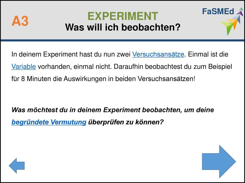 EXPERIMENT Was will ich beobachten