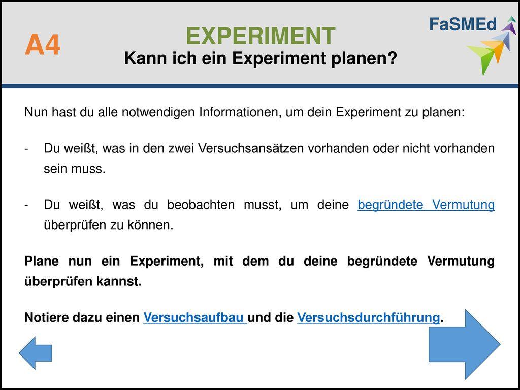EXPERIMENT Kann ich ein Experiment planen