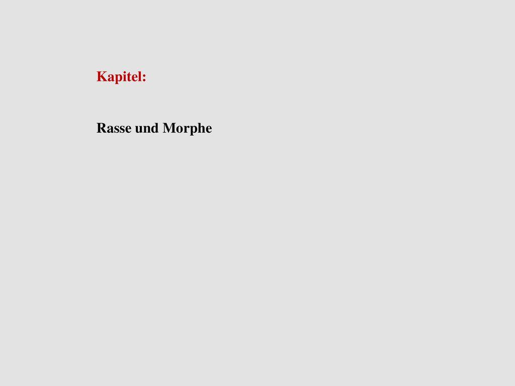 Kapitel: Rasse und Morphe