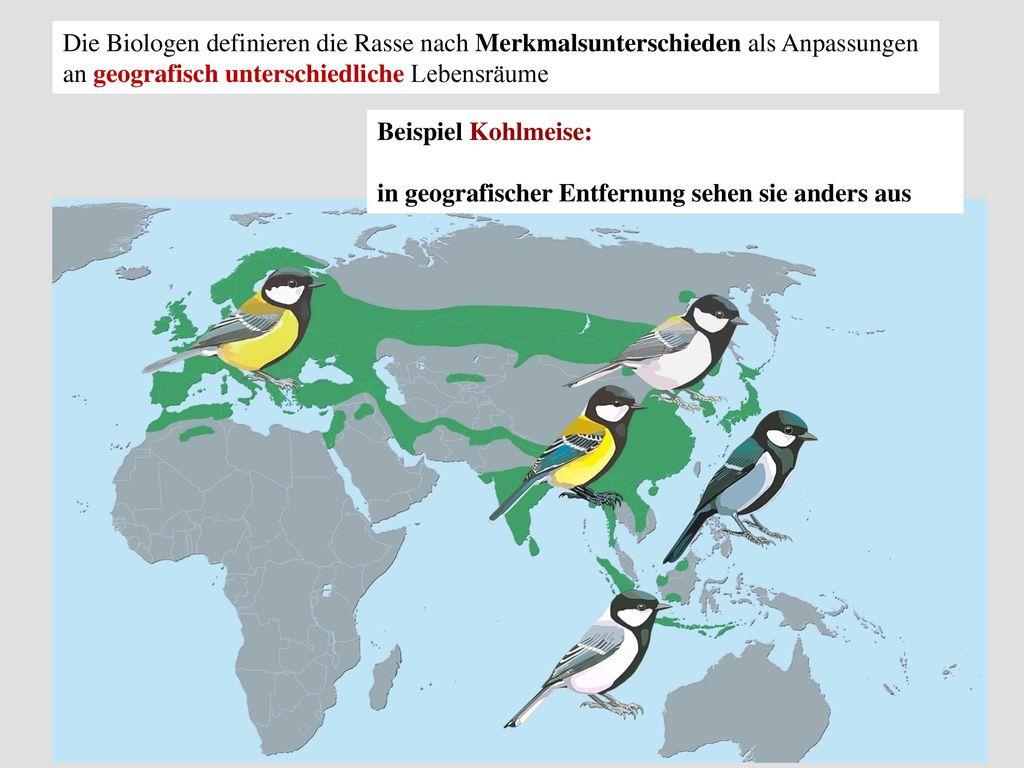 Die Biologen definieren die Rasse nach Merkmalsunterschieden als Anpassungen an geografisch unterschiedliche Lebensräume