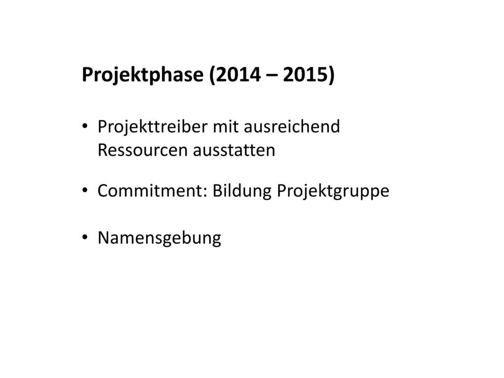 Projektphase (2014 – 2015) Projekttreiber mit ausreichend Ressourcen ausstatten. Commitment: Bildung Projektgruppe.