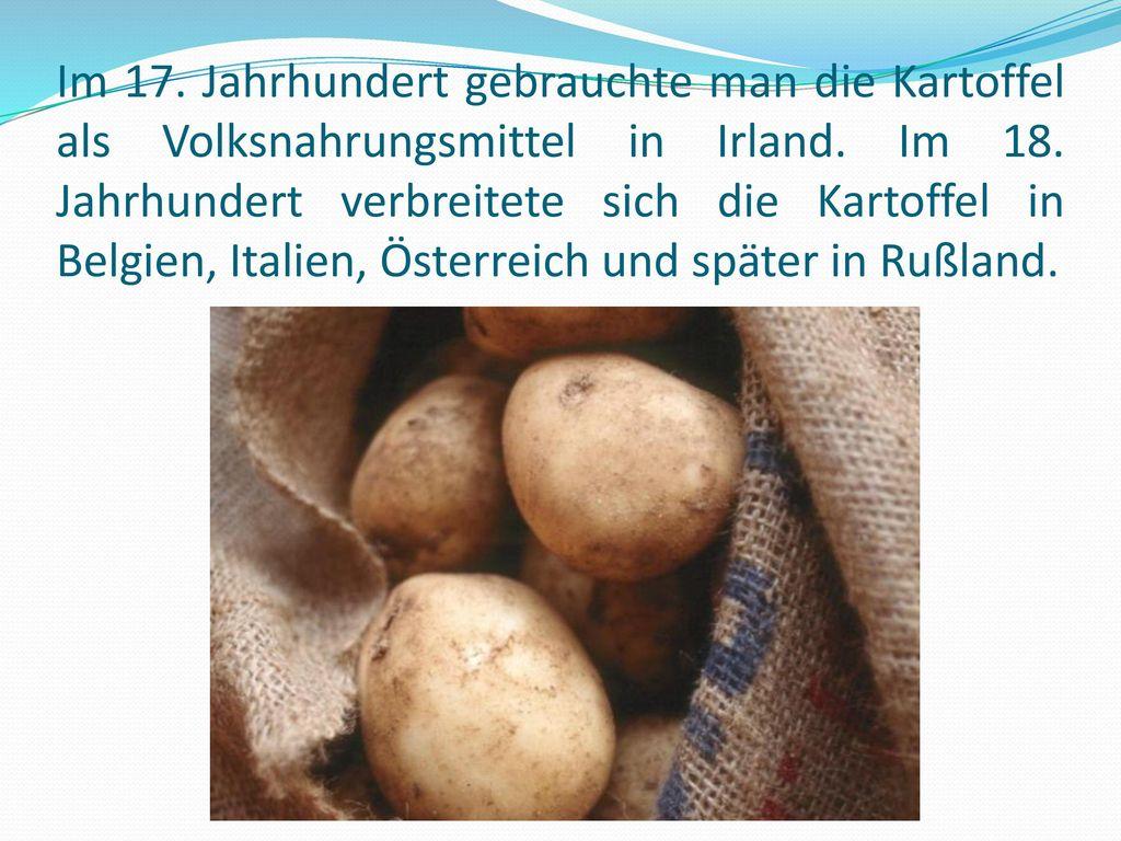Im 17. Jahrhundert gebrauchte man die Kartoffel als Volksnahrungsmittel in Irland.