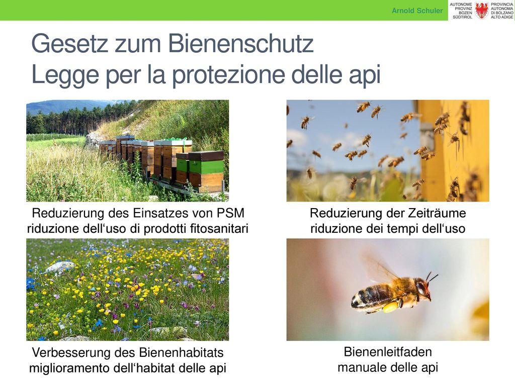 Gesetz zum Bienenschutz Legge per la protezione delle api