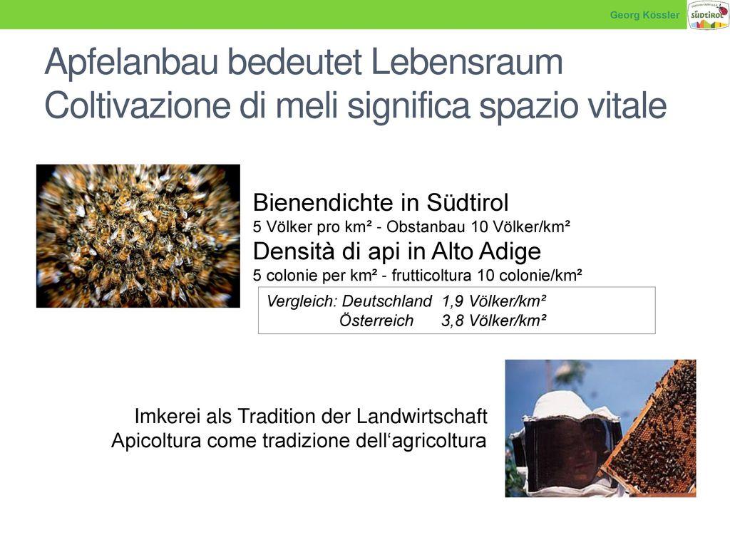 Georg Kössler Apfelanbau bedeutet Lebensraum Coltivazione di meli significa spazio vitale. Bienendichte in Südtirol.