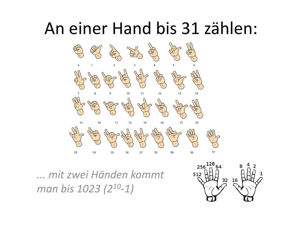 An einer Hand bis 31 zählen: