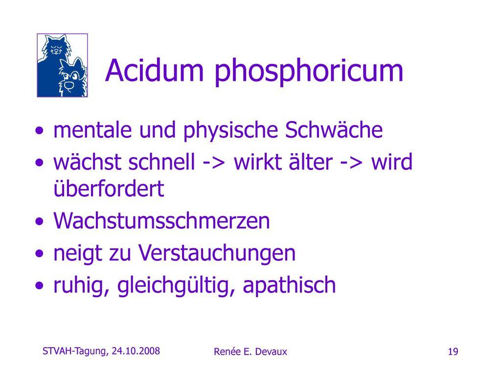 Acidum phosphoricum mentale und physische Schwäche