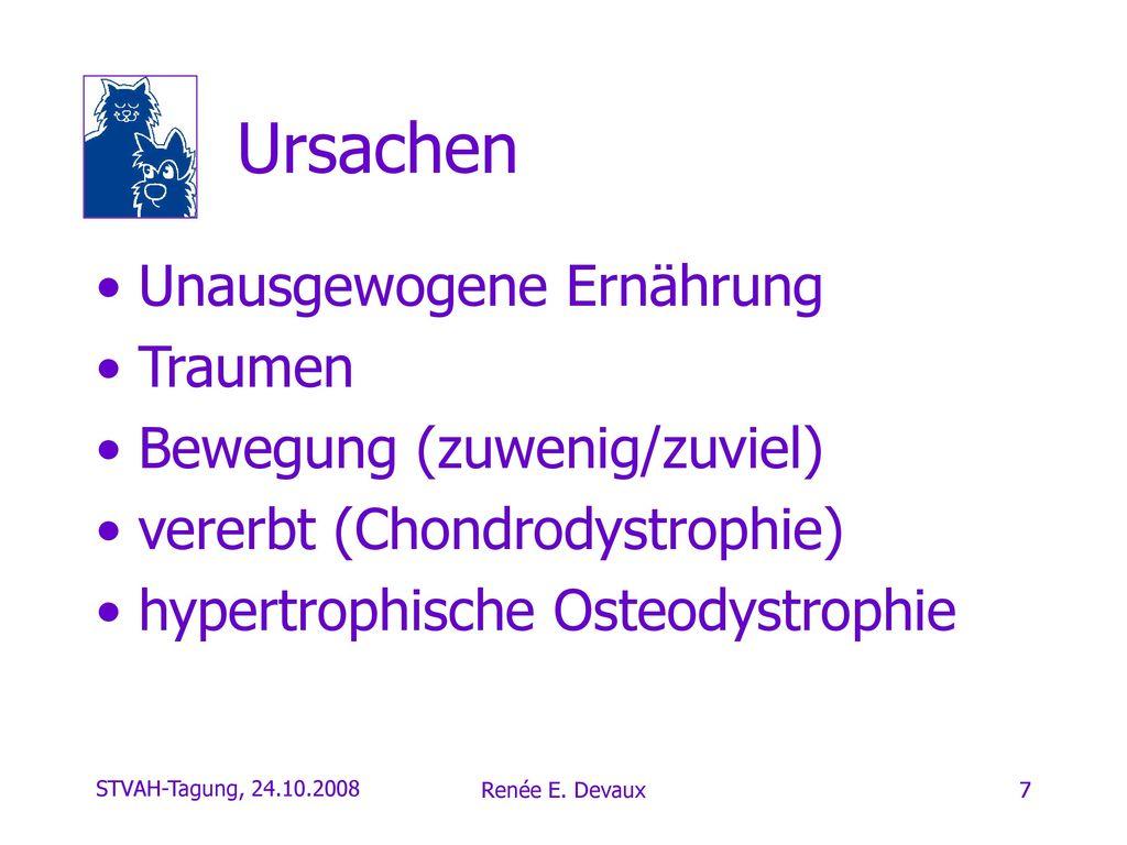 Ursachen Unausgewogene Ernährung Traumen Bewegung (zuwenig/zuviel)