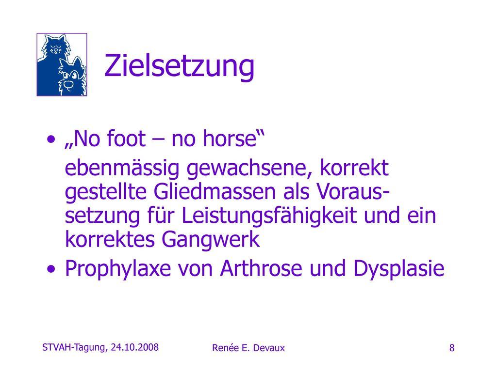 """Zielsetzung """"No foot – no horse"""