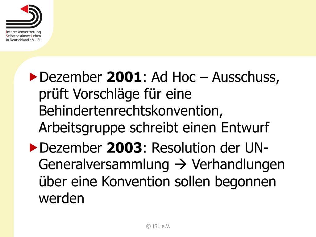 Dezember 2001: Ad Hoc – Ausschuss, prüft Vorschläge für eine Behindertenrechtskonvention, Arbeitsgruppe schreibt einen Entwurf
