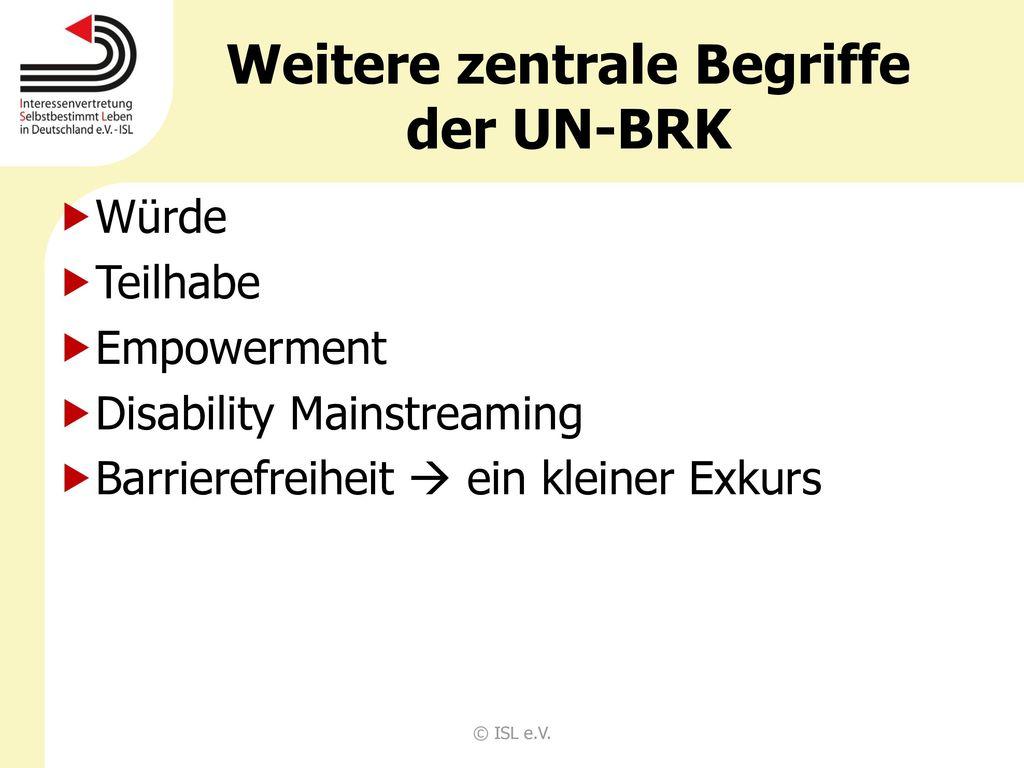 Weitere zentrale Begriffe der UN-BRK