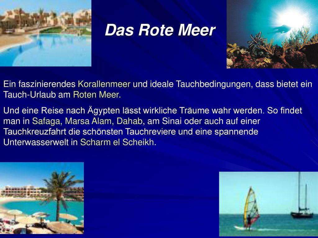 Das Rote Meer Ein faszinierendes Korallenmeer und ideale Tauchbedingungen, dass bietet ein Tauch-Urlaub am Roten Meer.