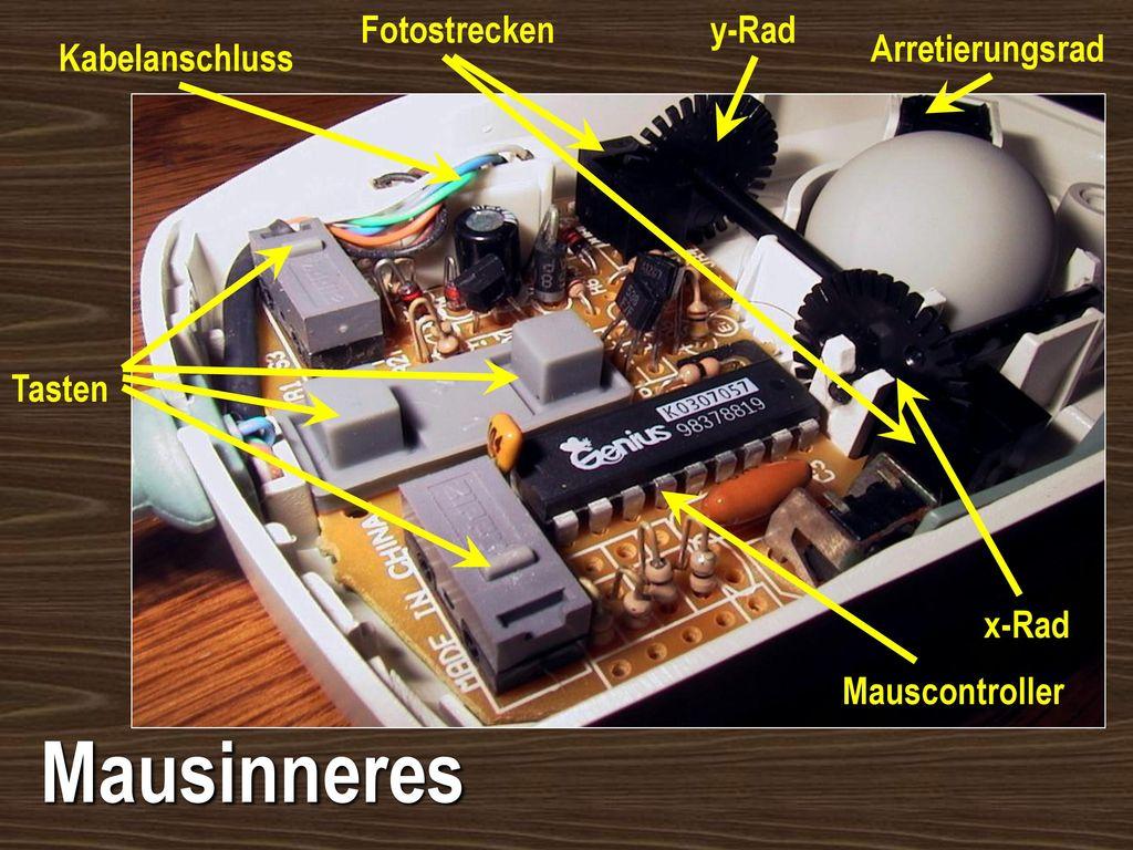Mausinneres Fotostrecken y-Rad Arretierungsrad Kabelanschluss Tasten