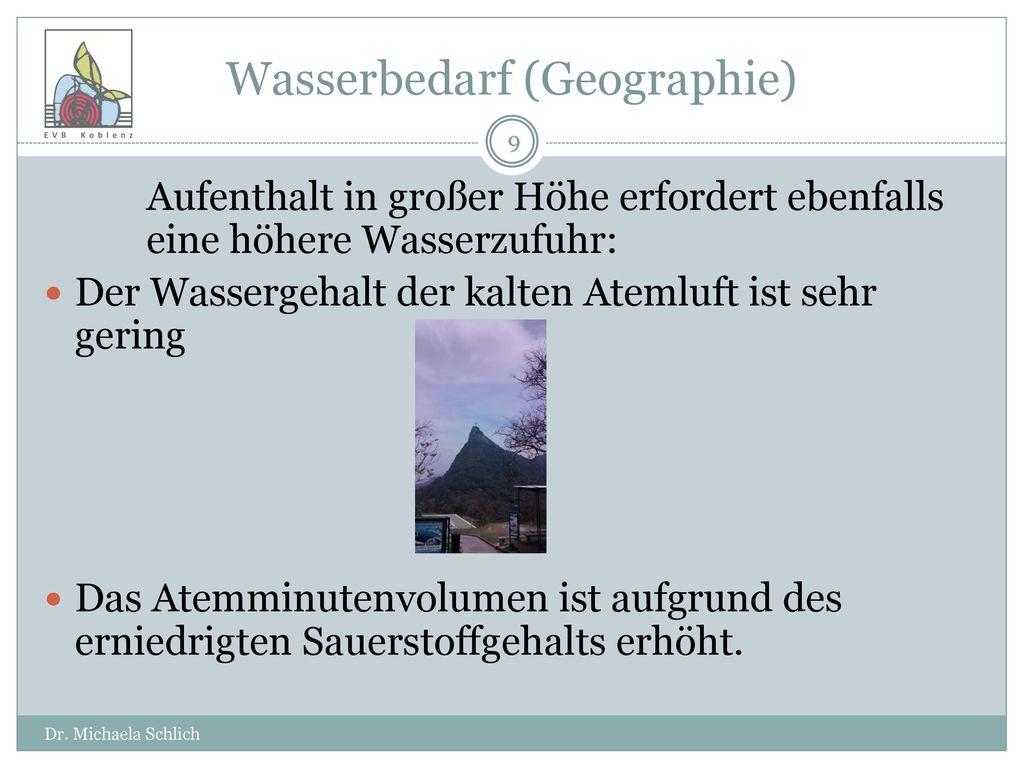 Wasserbedarf (Geographie)
