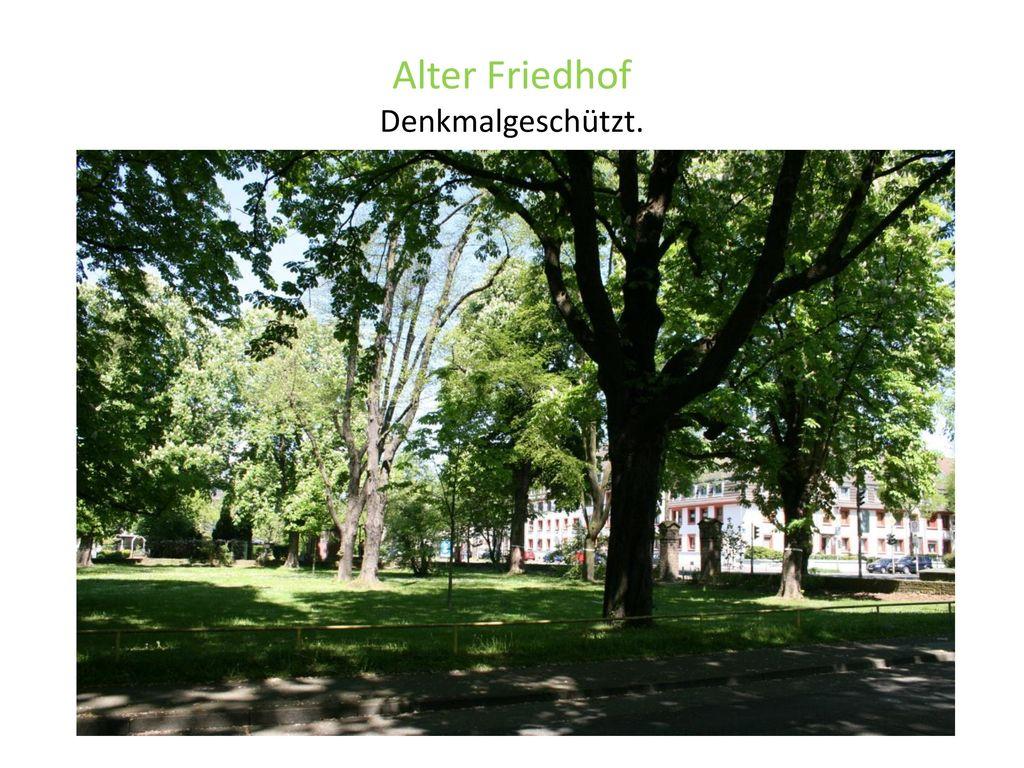 Alter Friedhof Denkmalgeschützt. <header> <date/time>