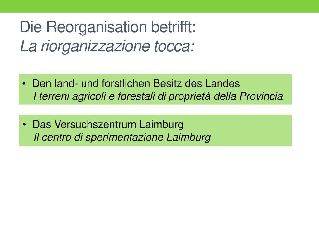 Die Reorganisation betrifft: La riorganizzazione tocca: