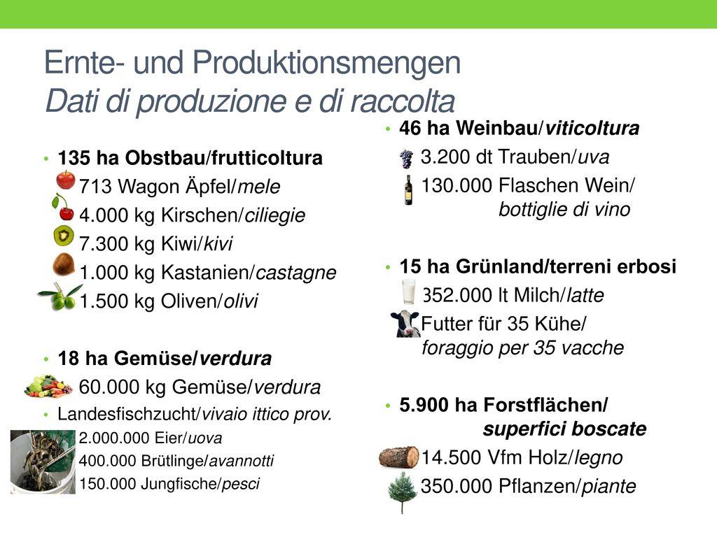 Ernte- und Produktionsmengen Dati di produzione e di raccolta