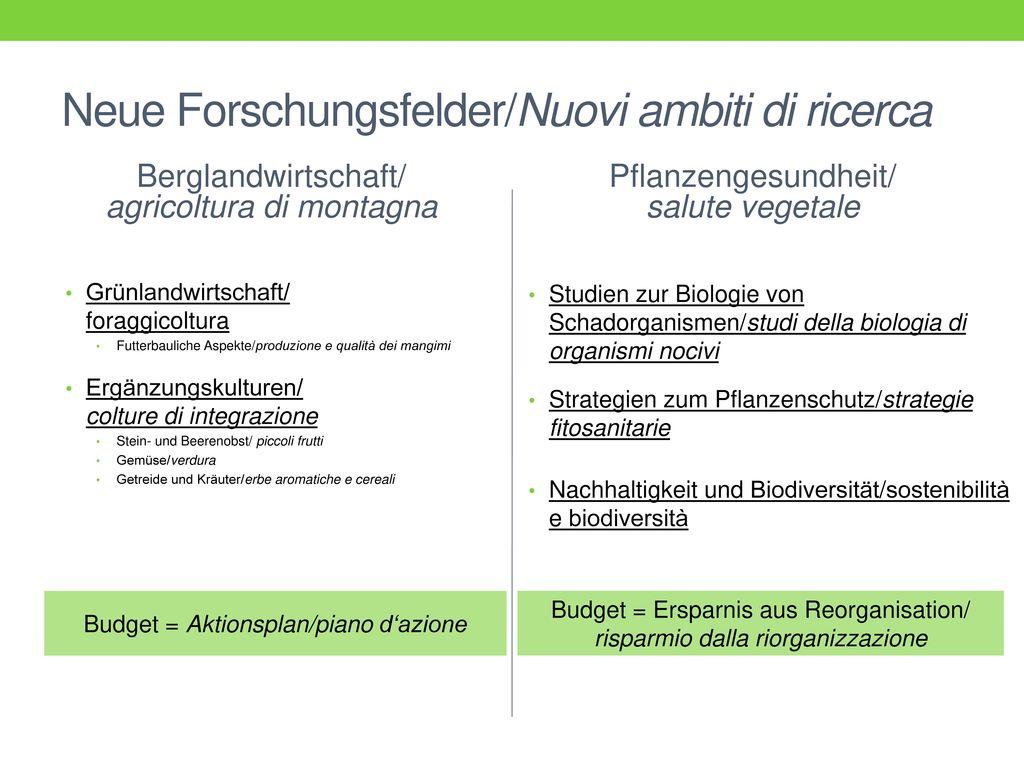 Neue Forschungsfelder/Nuovi ambiti di ricerca