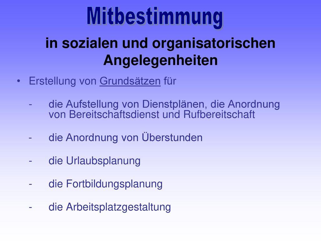 in sozialen und organisatorischen Angelegenheiten
