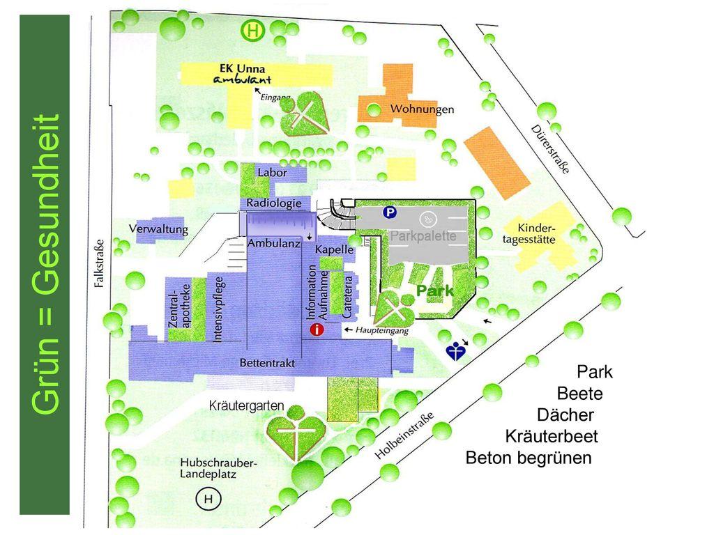 Grün = Gesundheit Park Beete Dächer Kräuterbeet Beton begrünen
