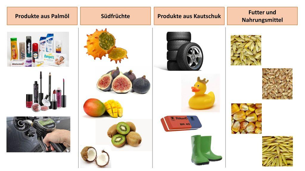 Produkte aus Kautschuk Futter und Nahrungsmittel