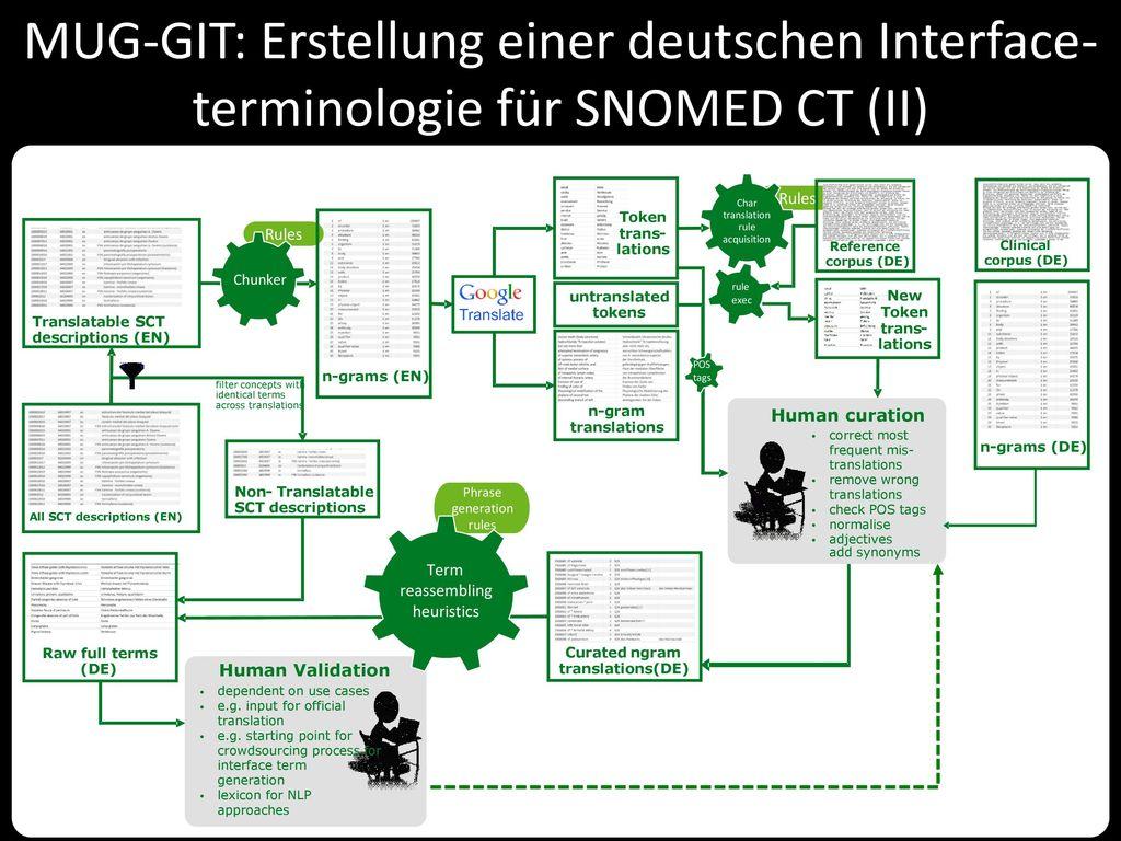 MUG-GIT: Erstellung einer deutschen Interface-terminologie für SNOMED CT (II)