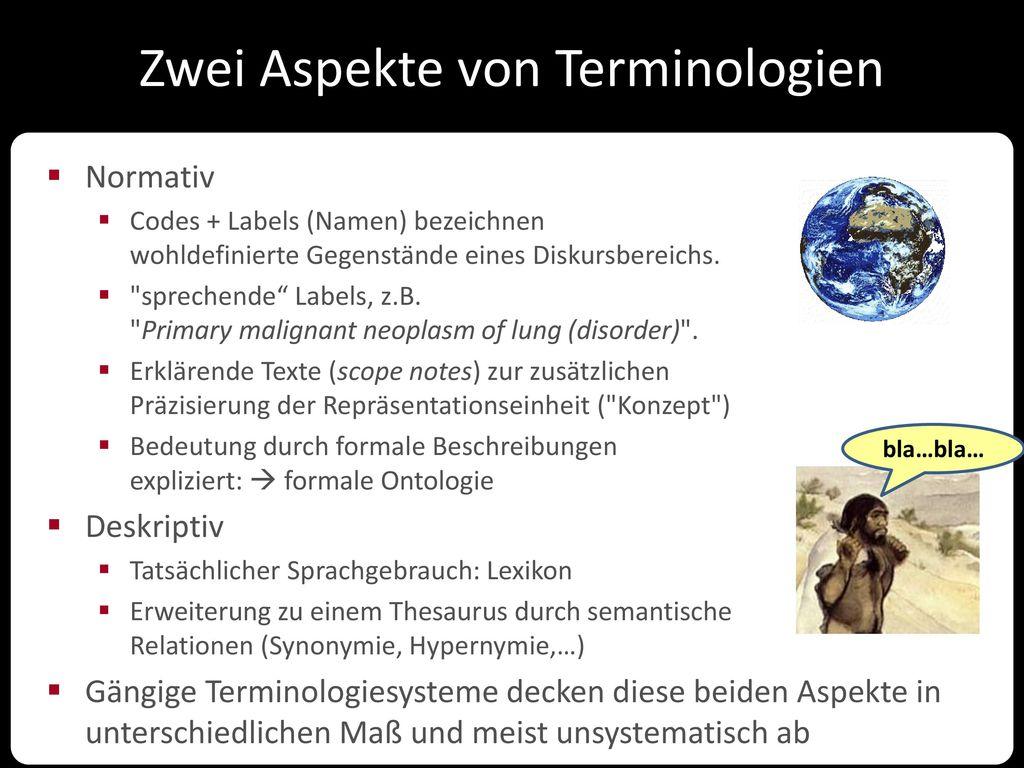 Zwei Aspekte von Terminologien