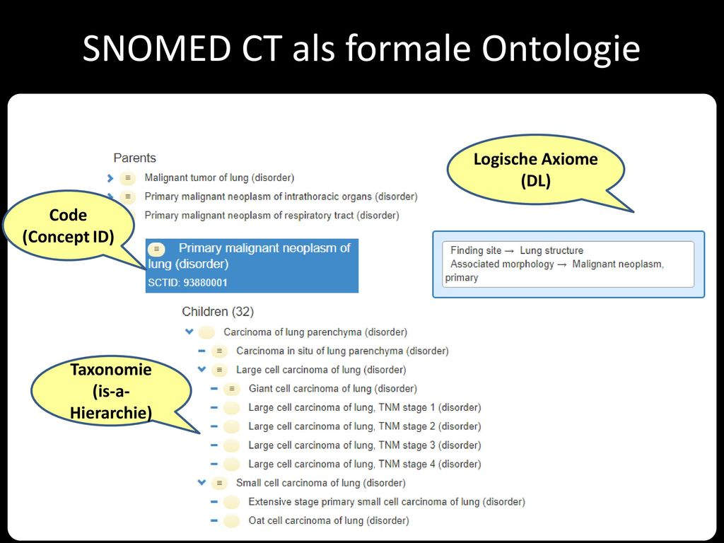 SNOMED CT als formale Ontologie