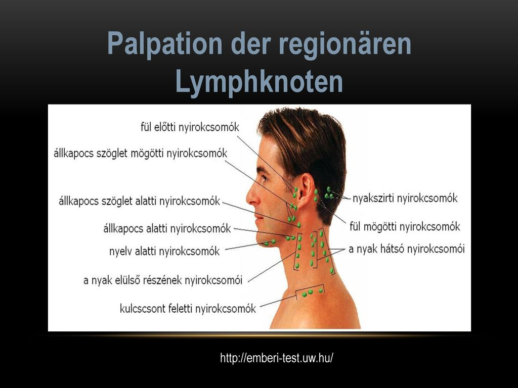 Palpation der regionären Lymphknoten