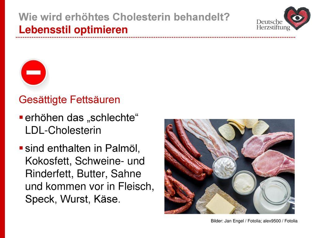 Wie wird erhöhtes Cholesterin behandelt Lebensstil optimieren