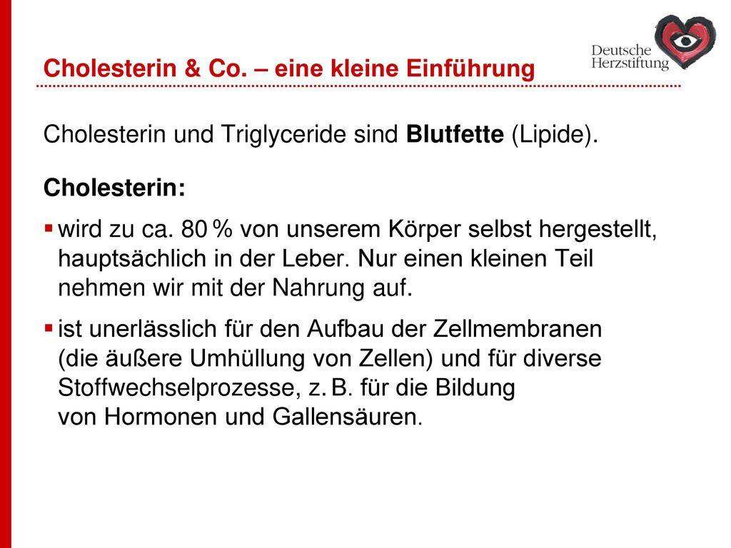 Cholesterin & Co. – eine kleine Einführung