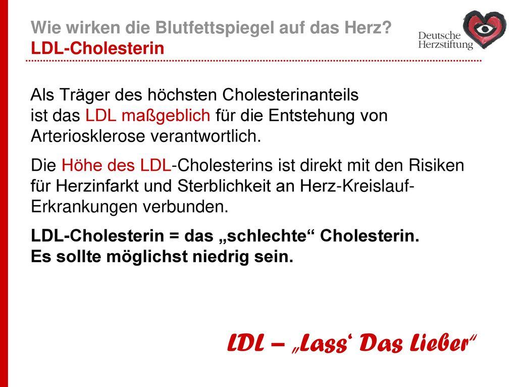 Wie wirken die Blutfettspiegel auf das Herz LDL-Cholesterin