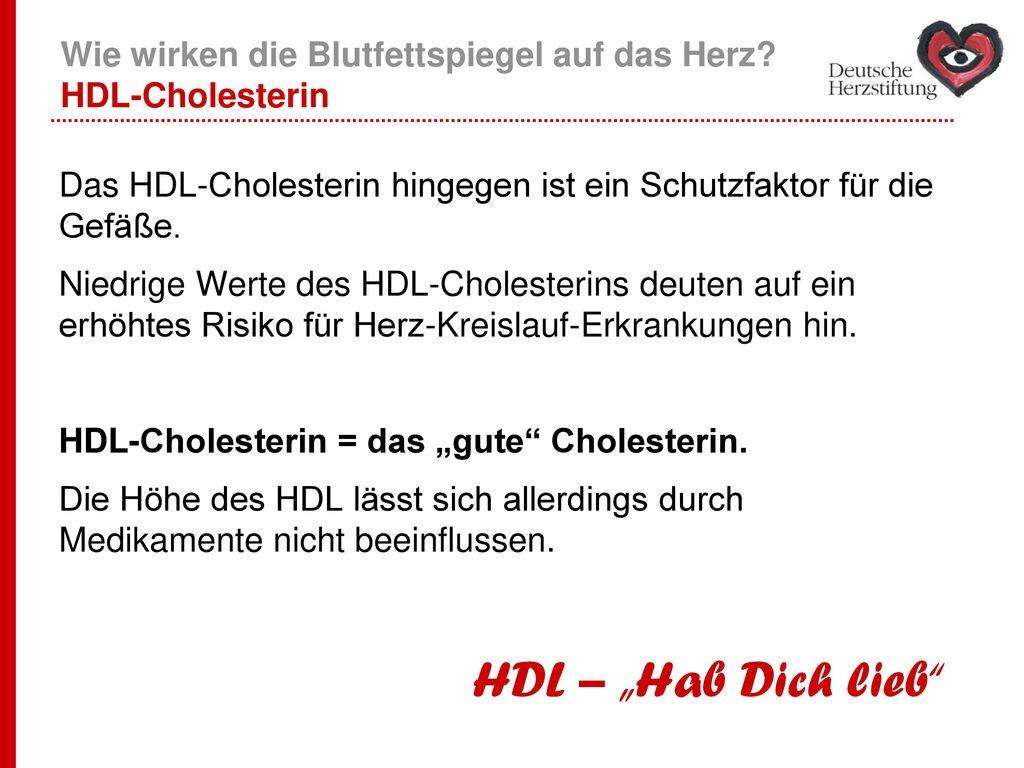 Wie wirken die Blutfettspiegel auf das Herz HDL-Cholesterin