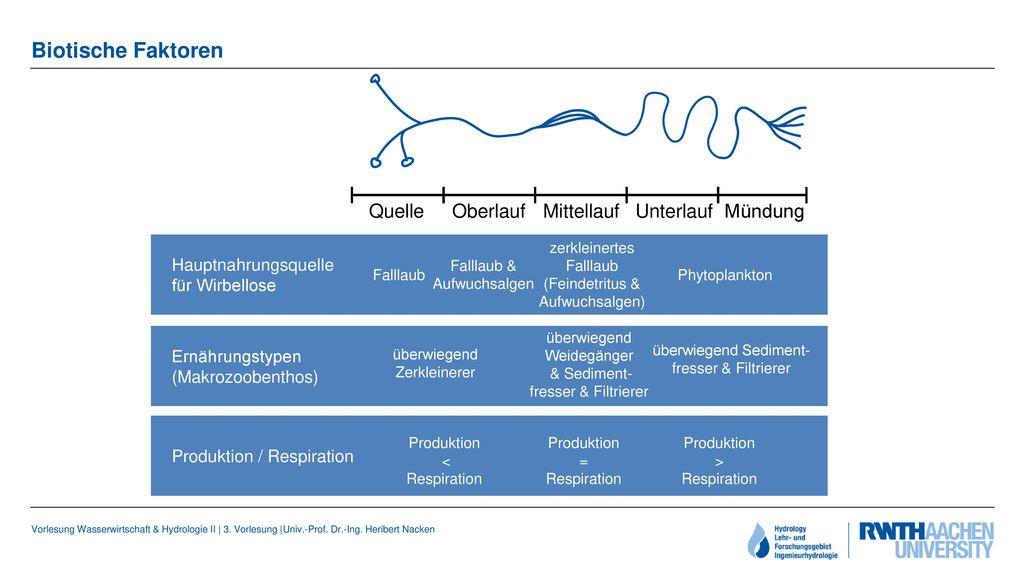 Biotische Faktoren Quelle Oberlauf Mittellauf Unterlauf Mündung