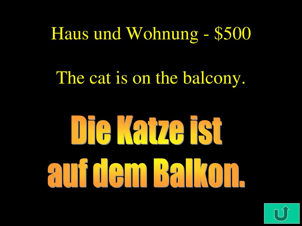Haus und Wohnung - $500 The cat is on the balcony.