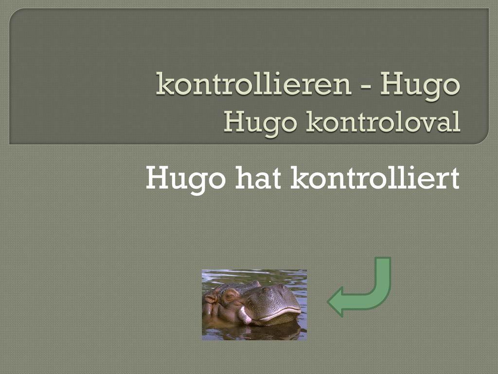 kontrollieren - Hugo Hugo kontroloval