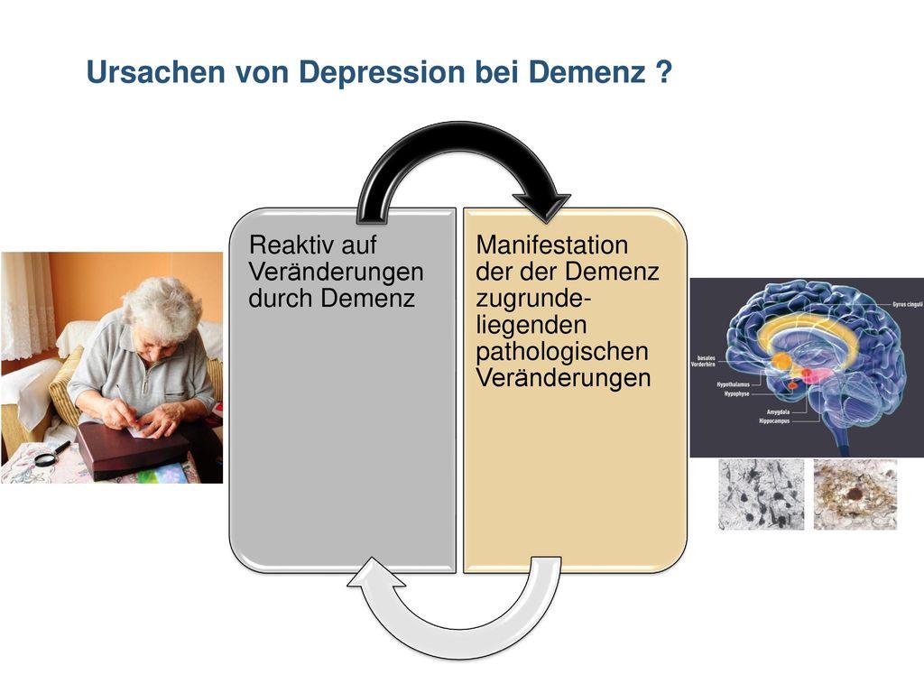 wegweiser demenz tübingen