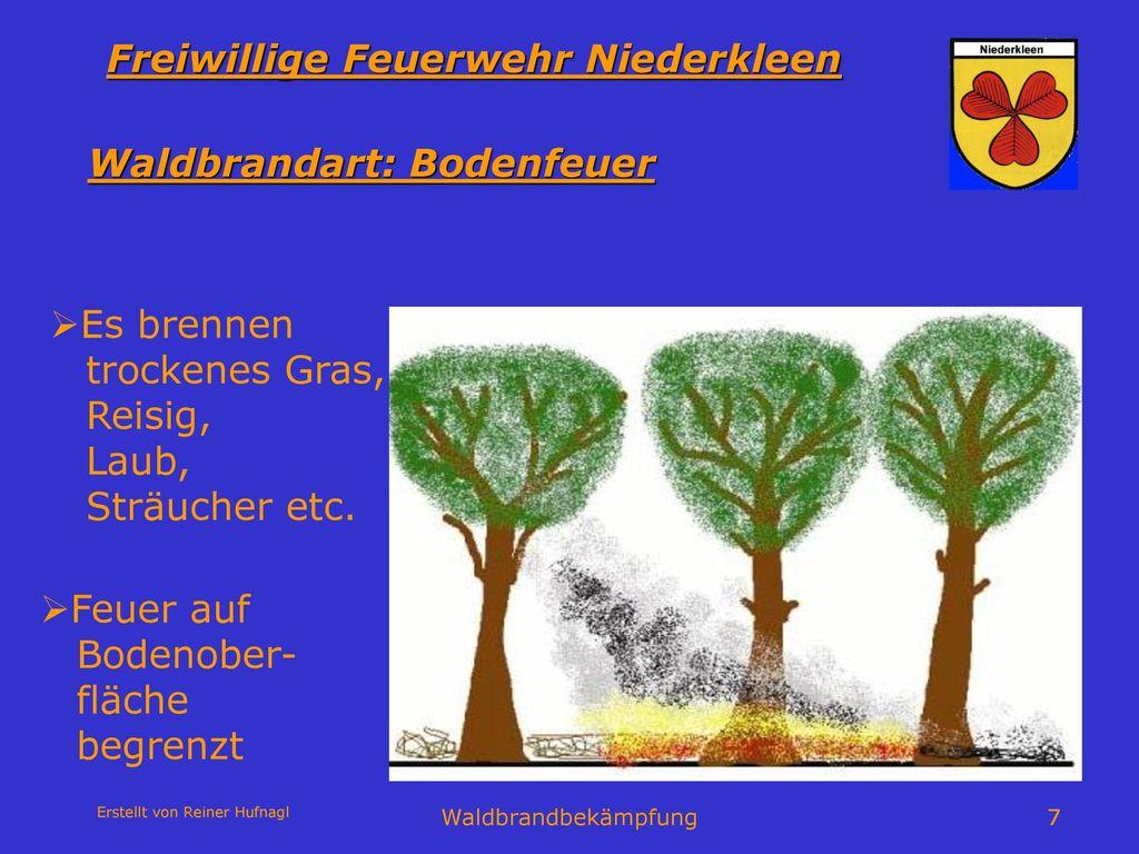 Waldbrandart: Bodenfeuer