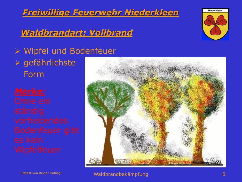 Waldbrandart: Vollbrand