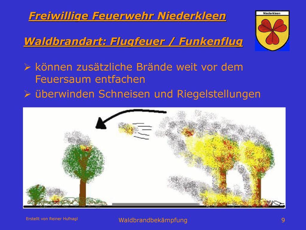 Waldbrandart: Flugfeuer / Funkenflug