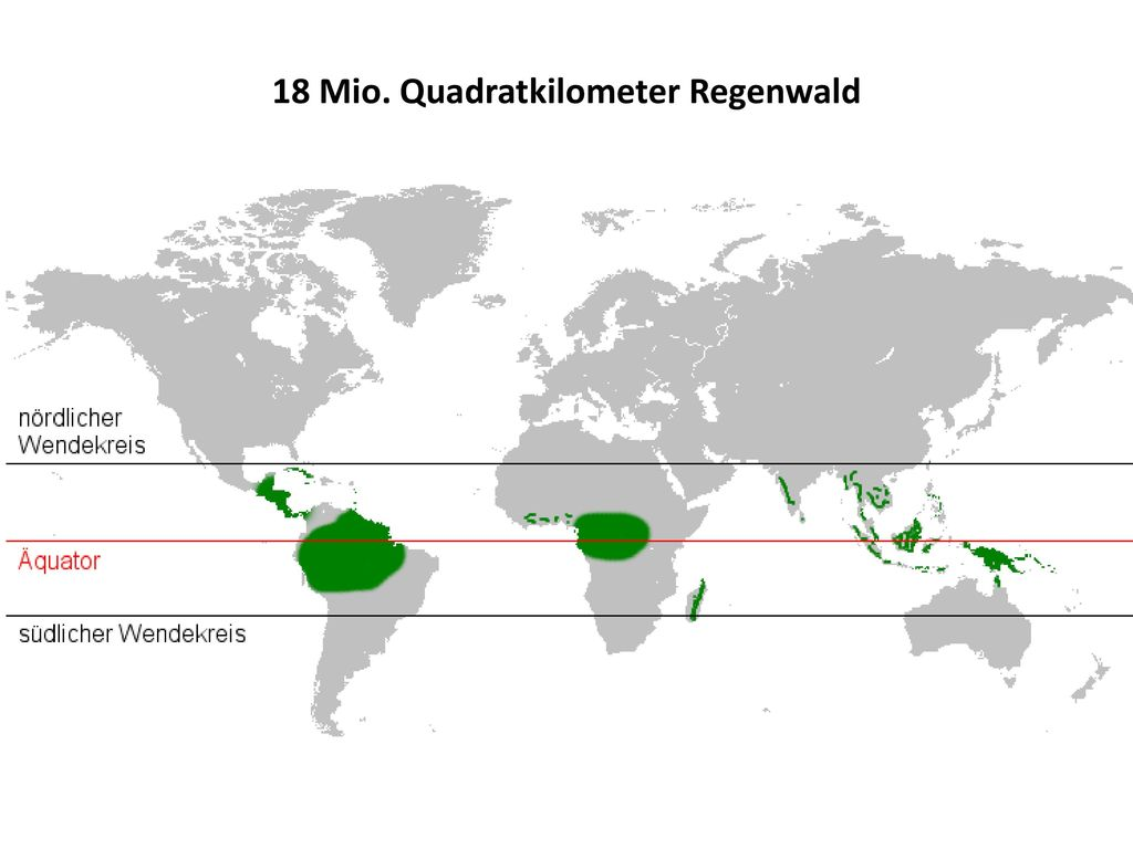 18 Mio. Quadratkilometer Regenwald