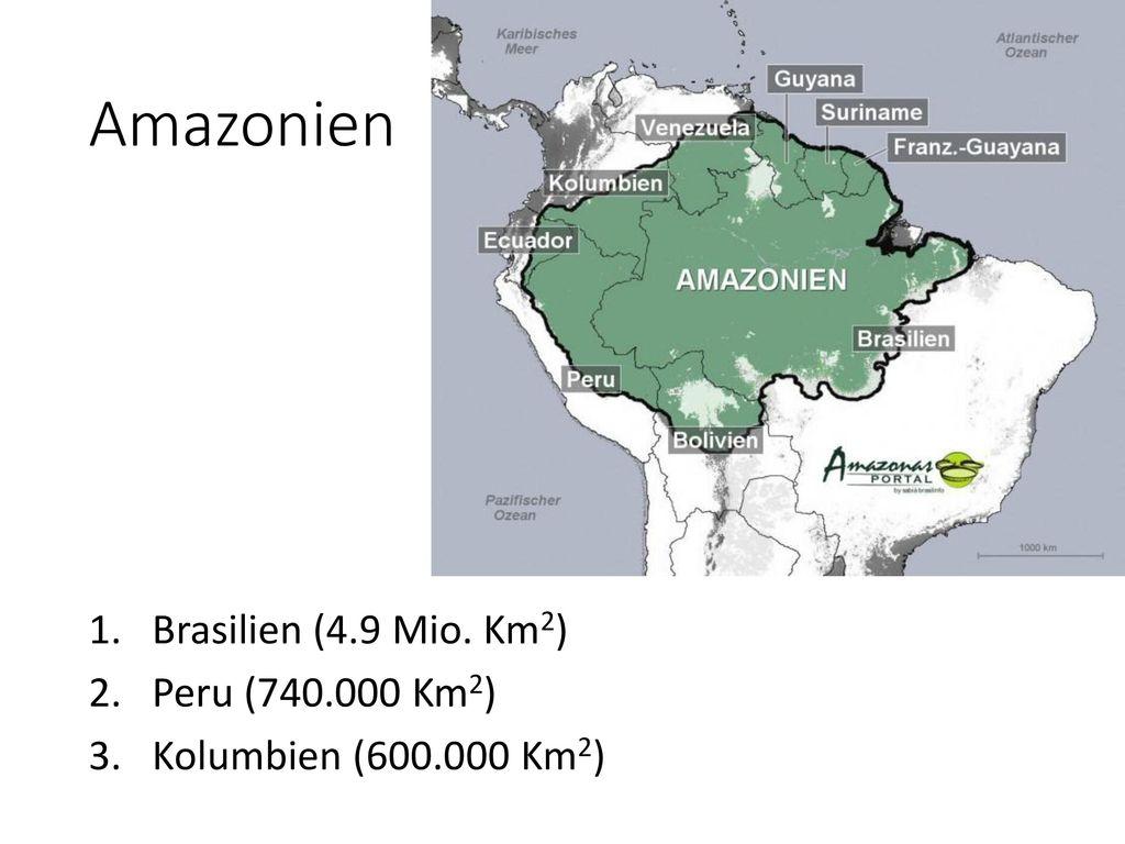 Amazonien Brasilien (4.9 Mio. Km2) Peru (740.000 Km2)