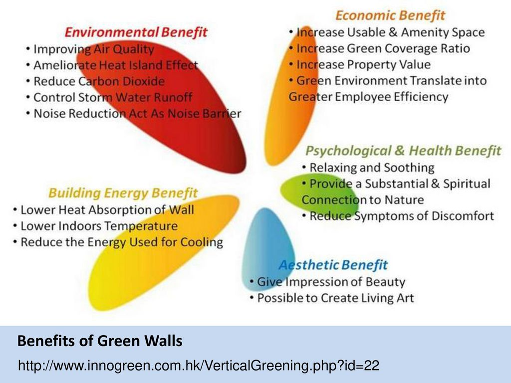Benefits of Green Walls